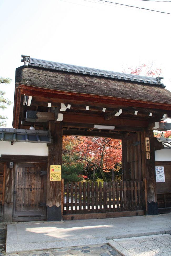 2009年京都紅葉情報13(妙心寺・仁和寺・広沢池)