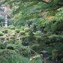 <三千院1>  最長が比叡山に小堂を構えたのが始まりで、明治維新後に大原に移りました。 里山の風景が広がり、京都の中心地とはまた違った良さがありました。  住所: 京都市左京区大原来迎院町540 URL; http://www.sanzenin.or.jp/top.html