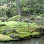 <西芳寺2>  京都には苔が美しい庭園が数多くありますが、特に苔寺は際立っています。 でも、近年は気候変動の影響で苔の生育環境が悪化し、苔の管理が大変だと聞きます。