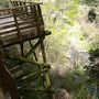 新緑を求めて「大阪府民の森」を歩く