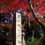 京都洛東の紅葉♪燃えるような赤♪♪毘沙門堂と勧修寺にて
