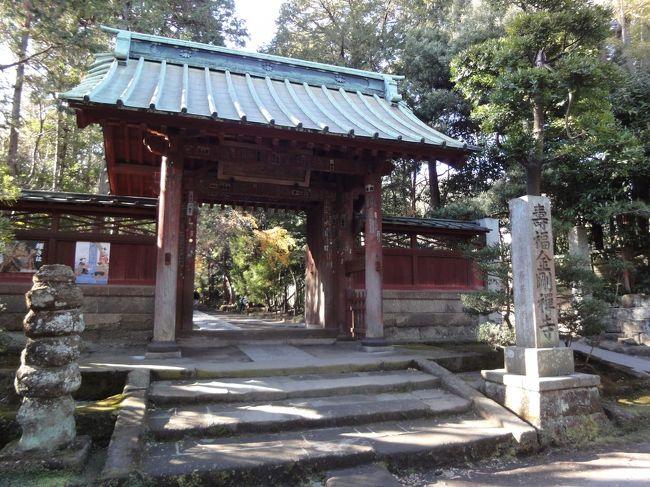 寿福寺 鎌倉 近辺