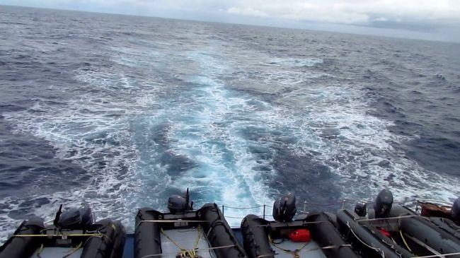(2011/1/20) 南極旅行4日目  「魔のドレ−ク海峡」に奇跡が起こる!
