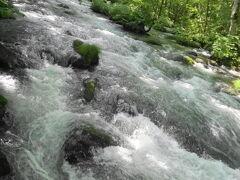 奥入瀬は涼しげな渓流が10キロ以上続きます。こちらは、流れが集まる「三乱の流れ」。