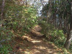 関八州見晴台への道は狭い。