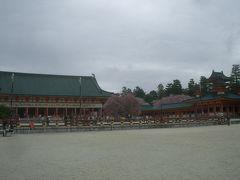 今年の花見のメーンイベントは平安神宮の神苑。久しぶりです。