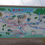 【日本三大桜】 満開の国指定天然記念物 「 根尾谷淡墨桜 」 を訪れて  2012年4月