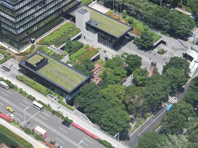 「東京都庁展望室」45階からの眺望 東京スカイツ …