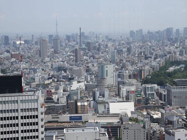 新宿から東京ドームまでの行き方について教えて下 …