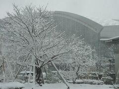金沢駅も真っ白です。