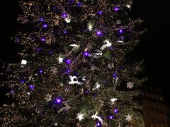 大きなクリスマスツリーが設置されていました。  ツリーと一緒に写真を撮る台は、順番待ちで大混雑していました。