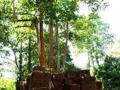 ココは初めての遺跡:Chau Say Tevoda。 最初に目に入ったのは、キレイに積み重ねられた大きな赤茶の石。
