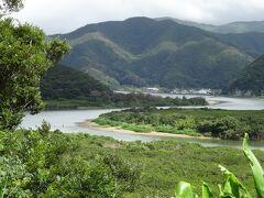 マングローブの原生林が広がる