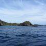 東京から1000km!最後の楽園、夢の小笠原《4》 ~南島・クジラ・戦跡、そしてナイト~