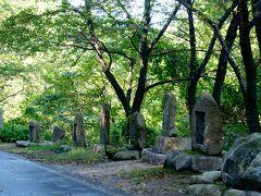 五頭山への道路、やまびこ通りを通って南魚沼市に向かいます。  この やまびこ通り 4kmほどの林道ですが 句碑歌碑の道と呼ばれています。 1箇所に付き4〜5基、多い所で10基ほど。40箇所余りの石碑群 総数で250基ほど有ります。 句碑歌碑を読みながらのんびり歩くのも良いでしょう。