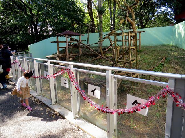 千葉市動物公園(初)   千葉の子連れおでかけ情報ステーション