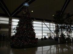 Detroitです。 クリスマスに染まっていました。
