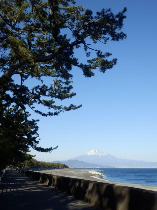 ぷち旅! 世界文化遺産・富士山・・・その① ≪構成資産・三保の松原~観る≫
