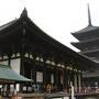 冬の関西でくいだおれ奈良・大阪編~興福寺で国宝に囲まれ、東大寺で鹿に囲まれ、大阪で焼肉とホルモンをはしごする