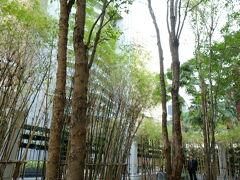 BTS駅前のオアシス   日本庭園風に竹林の休憩所です。周りのビルから大勢の人が一休みに出てきていました。  2時間と1分。へとへとで、もう帰り時。ここからタクシーで我が家へ。 エアコンで生き返る…。