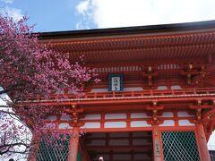 清水寺に到着。 懐かしい!中学校の修学旅行以来です。