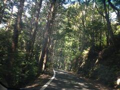 玉置山に向けて車を走らせます。十津川からじゃなくて、熊野の方から行ったら、道が険しい…(>_<)