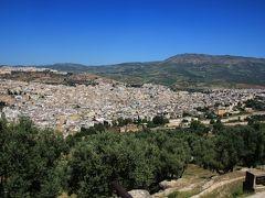 フェズの旧市街(メディナ)は世界遺産に指定されていて、非常に歴史があります。丘からするときれに見えますが、旧市街はフェズ・エル・バリと呼ばれ、迷宮都市として知られています。しかし、どこがどう迷宮かはここからではわかりません。