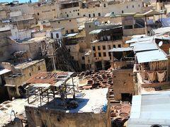 お店の階段から屋根の上に上ると、青空の下フェズの街並みと、眼下にはタンネリが広がっていました。