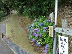 登山口です。 紫陽花が鮮やかでした。