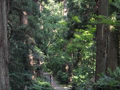 表参道を少し歩いてみる。 現在は、山頂まで車道があるため、通う人もほとんどいない。 杉が立ち並ぶ石畳の道に、微かに歴史の息吹を感じた。
