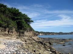 ≪御幸之浜≫  南京浜から遊歩道を10分ほど歩くと、御幸之浜に到着した。 かつて昭和天皇行幸の折にここで生物採取をされたことが地名の由来らしい… 岩場では大型有孔虫の化石・貨幣石がゴロゴロ転がっていたww