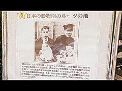 1872年(明治5年)から園内に遊具が置かれ始め、日本最古の動物園と言われる上野動物園が開園する1882年(明治15年)の10年も前から、ここ花やしきには動物を置いていた.......と書かれ......さり気無く日本最古の動物園もアピール......。  .....大正天皇が...お忍びで来られていたんですと....  畏れ多い......。  ※ 私はお忍びで来られたのは明治天皇だと思っていました...