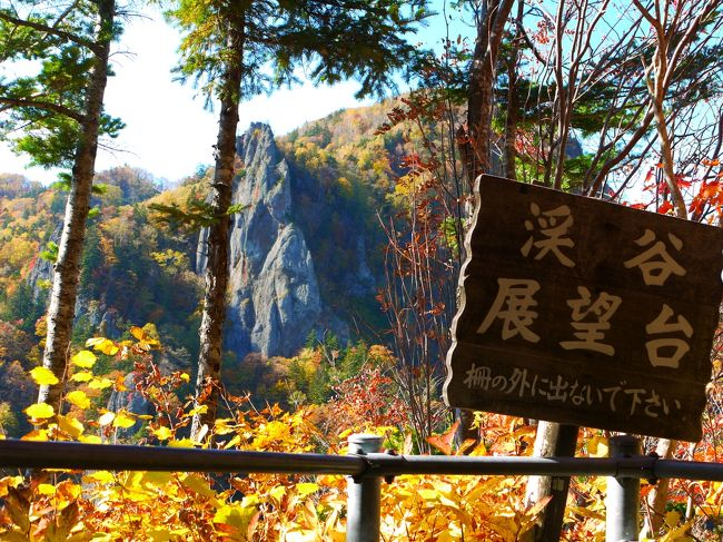 黄金色に輝く定山渓と豊平峡ダムは紅葉がとっても見頃!