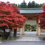 高野山の紅葉を楽しむ