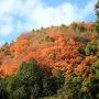 京都市内からの出発です。 箕面までは車で約一時間。  山も綺麗に紅葉しています!