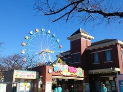 10:30 あらかわ遊園  今日はよく晴れて散歩日和! 近くのあらかわ遊園へやって来ました。