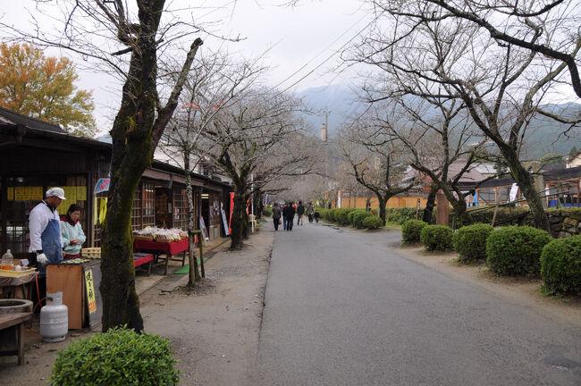 九州の秋に会いに行く【4】 ~筑前の小京都秋月~