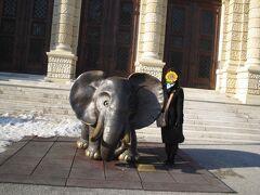 「自然史博物館」の前には可愛い象さんが!!