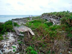 そして、この島にやってくる台風もまた、すごい。