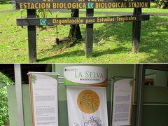 11時前に、ラ・セルバ研究ステーション(La Selva Biological Station)に到着です。 アレナルから2時間半弱でした。 この施設は、熱帯研究所の3つの研究ステーションの1つです。 一般観光客にも開放されていて、宿泊もできます。  ※ 熱帯研究所 英語名: Organization for Tropical Studies (OTS) スペイン語名:  Organización para Estudios Tropicales (OET)  1963年創立の熱帯生態学の研究組織 ラテンアメリカ、米国、豪州などの63大学からなる非営利組織が運営  3ヶ所の研究ステーションを保有 1) ラ・セルバ研究ステーション(La Selva Biological Station) : 熱帯雨林の生態を研究する施設 2) パロ・ベルデ研究ステーション(Palo Verde Biological Station): 熱帯乾燥林の生態を研究する施設 3) ラス・クルス研究ステーション(Las Cruces Biological Station): 熱帯雲霧林の生態を研究する施設