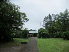 朝5時半に起床して、ラ・セルバ研究ステーション敷地内を散歩します。 研究ステーション内に泊まると、気軽に熱帯雨林を散歩できます。