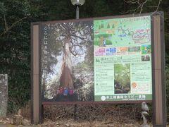 市房山森林セラピー基地です