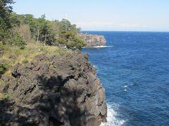 伊豆海洋公園から3キロを往復