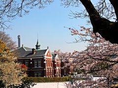 皇居の通り沿いには素敵な煉瓦つくりの洋館。 この建物は、東京国立近代美術館工芸館。  洋館にも桜は良く似合う。
