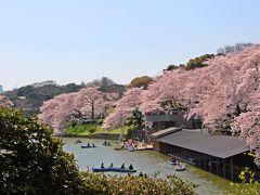 貸ボート屋さんの上にも桜が覆いかぶさっている。  ずっと眺めていたい春の美しい景色なのだが、立ち止まって見ることは出来ない。  千鳥ヶ淵緑道を歩く人の数は半端なく多い。 警備の方たちが、立ち止まらないで〜を連呼している。  気持ち的にはもう少し緑道を歩き、千鳥ヶ淵と桜の景色を愉しみたかったのだが、ヒト疲れしそうだったので緑道歩きは諦め、踵を返して英国大使館方向へと歩を進める。