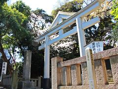 日枝神社は江戸城の鎮守でもあった神社で、春は桜も美しいという。  社殿への石段をゆっくりと登る。