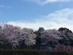 まずは彦根城に寄ってみました。