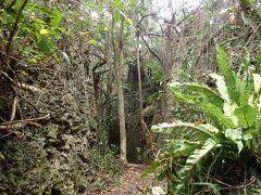 島の北部にあるバリバリ岩 大したことないだろうとなめていたのですが、ここがとても素晴らしかった。