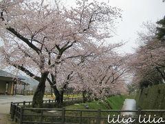 金沢城から、近江町市場へ行きます。