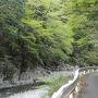 天川から先は対向車が来るのが怖い細い道。沢沿いに道があります。